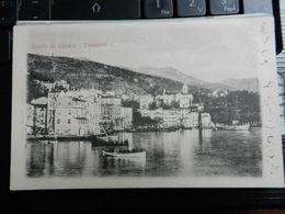 19686) GOLFO LA SPEZIA FEZZANO VIAGGIATA 1901 BELLISSIMA BOLLO ASPORTATO - La Spezia