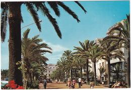 Lloret De Mar - Vista Paseo Verdaguer - 'Hotel Excelsior' - (Costa Brava - Espana) - Gerona