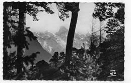 (RECTO / VERSO) ROUTE NAPOLEON EN 1963 - N° 2631 - COUP D' OEIL SUR LES MONTAGNES DU VALGAUDEMAR - FORMAT CPA VOYAGEE - France