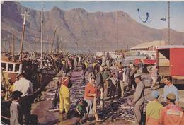 Sud Africa - Sud Africa