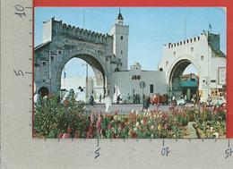 CARTOLINA VG TUNISIA - TUNIS - Bab El Khadhra - 10 X 15 - ANN. 1978 - Tunisia