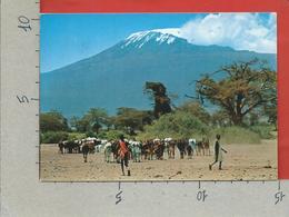 CARTOLINA VG TANZANIA - Masai Herdsmen With Mt. Kilimanjaro In Background - 10 X 15 - ANN. 1969 - Tanzania