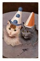 CHATS.CATS.CHAPEAUX POINTUS.                                                                                      . E.12 - Chats