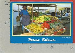 CARTOLINA VG BAHAMAS - NASSAU - Fruit An Vegetable Market - 10 X 15 - ANN. 1990 LAUDERDALE FLORIDA - Bahamas