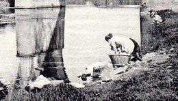 Lacuisine (Florenville). Les Deux Ponts Sur La Semois. Lavandière. Ca 1900 - Florenville