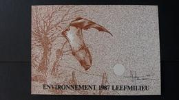 """BUZIN - Carte Autre: Timbres Numéro 2244/46 """"Année Européenne De L'environnement """" état Carte Blanco - Cartes-maximum (CM)"""