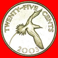 # BIRD (1999-2017): BERMUDA ★ 25 CENTS 2003 MINT LUSTER! LOW START ★ NO RESERVE! - Bermudes