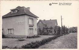 Beringen - Pieter Breugelstraat - Beringen