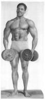 PHOTO  HOMME EN MAILLOT DE BAIN CULTURISTE CULTURISME 25 X 11.50 CM - Sports