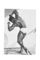 PHOTO HOMME EN MAILLOT DE BAIN CULTURISTE CULTURISME  15.50 X 10.50 CM - Sports