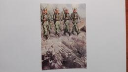 Corpo Volontari Giovinezza - War 1939-45