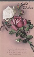 AS34 Greetings - Good Wishes - Red And White Roses - Holidays & Celebrations