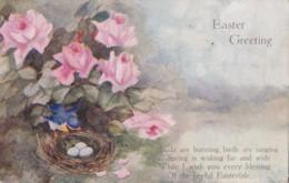 AS34 Greetings - Easter Greetings - Nest With Eggs, Bird, Flowers, Tuck Oilette - Easter