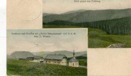 GERMANY - Two View Blick Gegen Den Feldberg - Good Postmark And Stamp  1912 - Feldberg