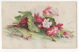 C Klein Pink & White Flowers 1929 Art Postcard - Klein, Catharina