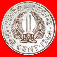 # GREAT BRITAIN: SIERRA LEONE ★ 1 CENT 1964! LOW START ★ NO RESERVE! - Sierra Leone