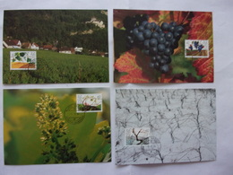 Liechtenstein évolutions De La Vigne Au Fil Des Quatres Saisons Printemps été Automne Hiver Vin Raisin - Wein & Alkohol