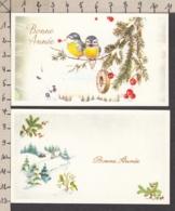 97181/ NOUVEL AN, 2 Mignonettes, Oiseaux - Nouvel An