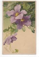 C Klein Blutenreigen Meissner & Buch 1200 Vintage Art Postcard - Klein, Catharina