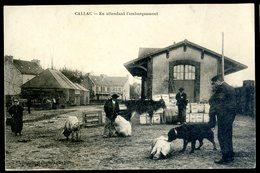 Cpa Du 22 Callac En Attendant L' Embarquement   ACH14 - Callac