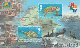 2001 Ascension Turtles Maps Hong Kong Year Of Snake  Souvenir Sheet MNH - Ascension (Ile De L')