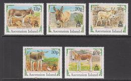 1994 Ascension Christmas Noel Donkey  Complete Set Of 5 MNH - Ascension (Ile De L')