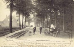 Turnhout La Chaussee D'anvers  Tram Et Attelage De  Chiens - Turnhout