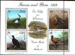 91812) Irlanda FAUNA E FLORA 1989-IN BF-USATO - Blocchi & Foglietti