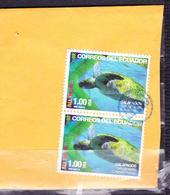 ECUADOR 2015 COVER PIECE MARINE TURTLE GALAPAGOS ISLANDS PAIR ALL YOU NEED IS ECUADOR - Ecuador