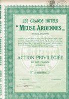 """BELGIQUE-HOTELS """"MEUSE-ARDENNES"""". DINANT. Lot De 2 Titres Différents - Actions & Titres"""
