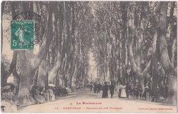 66. PERPIGNAN. Promenade Des Platanes. 12 - Perpignan