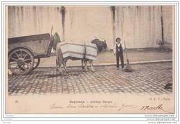 64) Bayonne.-  Attelage  Basque  - (belle Animation - Attelage De Boeufs - Oblitération De1904) - Bayonne