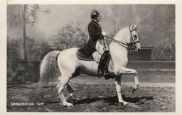 Orig. Foto AK - Wien Span. Hofreitschule - 1936 - Der Spanische Tritt - Pferde
