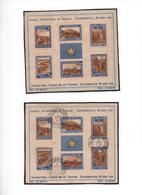 CONGO BELGE- 1938 - Congrès International .du Tourisme -( 2 Blocs   N Et Oblit. )  Yvert N°2  Voir Scans - Blocs