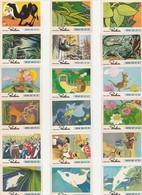 CHOCOLAT POULAIN - LOT De 54 IMAGES  DIFFERENTES - Fiches Illustrées