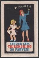 Denmark, Poster Stamp, Maerkat Nr. 4061, Mounted! - Emissions Locales