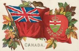 Manitoba , Canada , 1907 ; Flag & Coat Of Arms : TUCK 2911 - Winnipeg