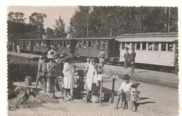 Madagascar - Tamatave -  Gare - Petit Format Annee 1960  - CPSM° - Madagascar