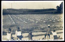 Cpa Carte Photo Allemagne Sarre Fête Sportive Au Lycée à Saint Ingbert En Octobre 1926   ACH14 - Saarpfalz-Kreis