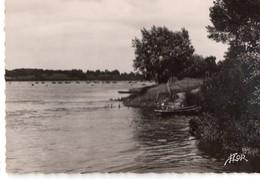 CPSM, (44), ANCENIS, Les Bords De La Loire, Jamais Voyagée - Ancenis