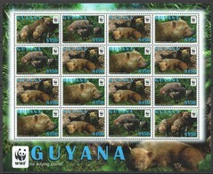 L359 2011 GUYANA FAUNA BUSH DOG WWF 1KB MNH - W.W.F.