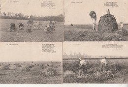 Lot De 7 CPA:La Vie Normande-Scènes Agricoles- - Basse-Normandie