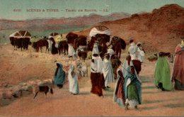 ALGERIE  SCENES ET TYPES  TRIBU EN ROUTE - Algérie