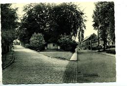 Rixensart : Rue De L'église - Rixensart