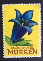 FIORI ALBERGHI  PALACE HOTEL MÜRREN   ETICHETTA PUBBLICITARIA - Erinnophilie