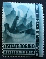 VISITATE TORINO VISITEZ TURIN  VISIT TURIN BESUCHT TURIN    ETICHETTA PUBBLICITARIA COMITATO TORINESE - Cinderellas