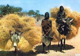 1 AK Tschad Chad * Rückkehr Von Der Feldarbeit - Retour Des Champs - IRIS Karte 5429 * - Tschad