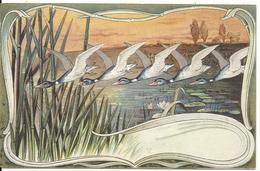 FANTAISIE. VOL DE CANARDS SAUVAGES - Oiseaux