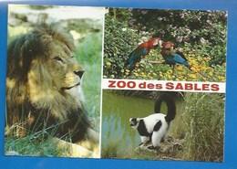 ANIMAUX - 85 - LES SABLES D'OLONNE - ZOO - JARDIN ZOOLOGIQUE - LION, ARA CHLOROPTÈRE, MAKI - COLL. L. & P. GAY - SUPERBE - Lions