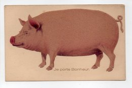 - CPA COCHONS - Je Porte Bonheur - - Cochons